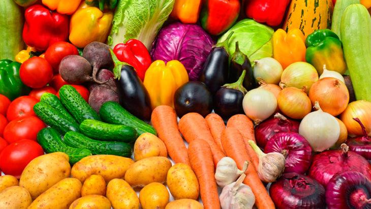 вегетарианство отзывы и результаты