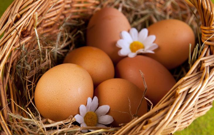 можно ли вегетарианцам есть яйца